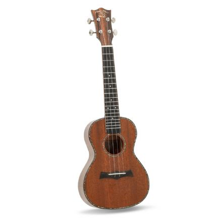 Snail RT-C Stained Mahogany Gloss Concert Ukulele with Bag